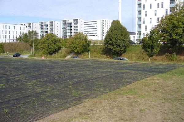 Grønne parkeringspladser kan blive fremtiden