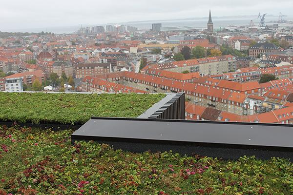 Samarbejdskoncept sikrer grønne tage og bygninger
