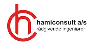 hos-hamiconsult-arbejder-vi-med
