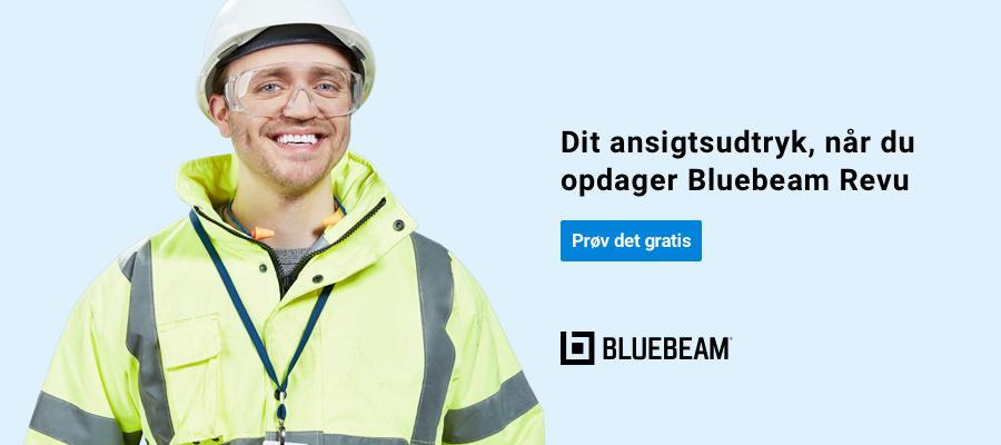 'Bluebeam'