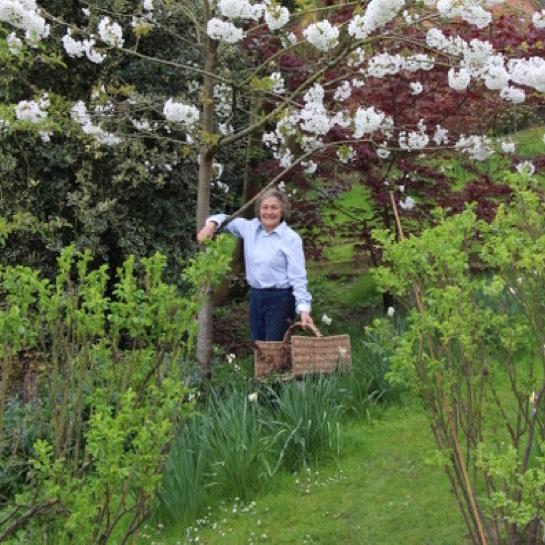 The Apprehensive Gardener