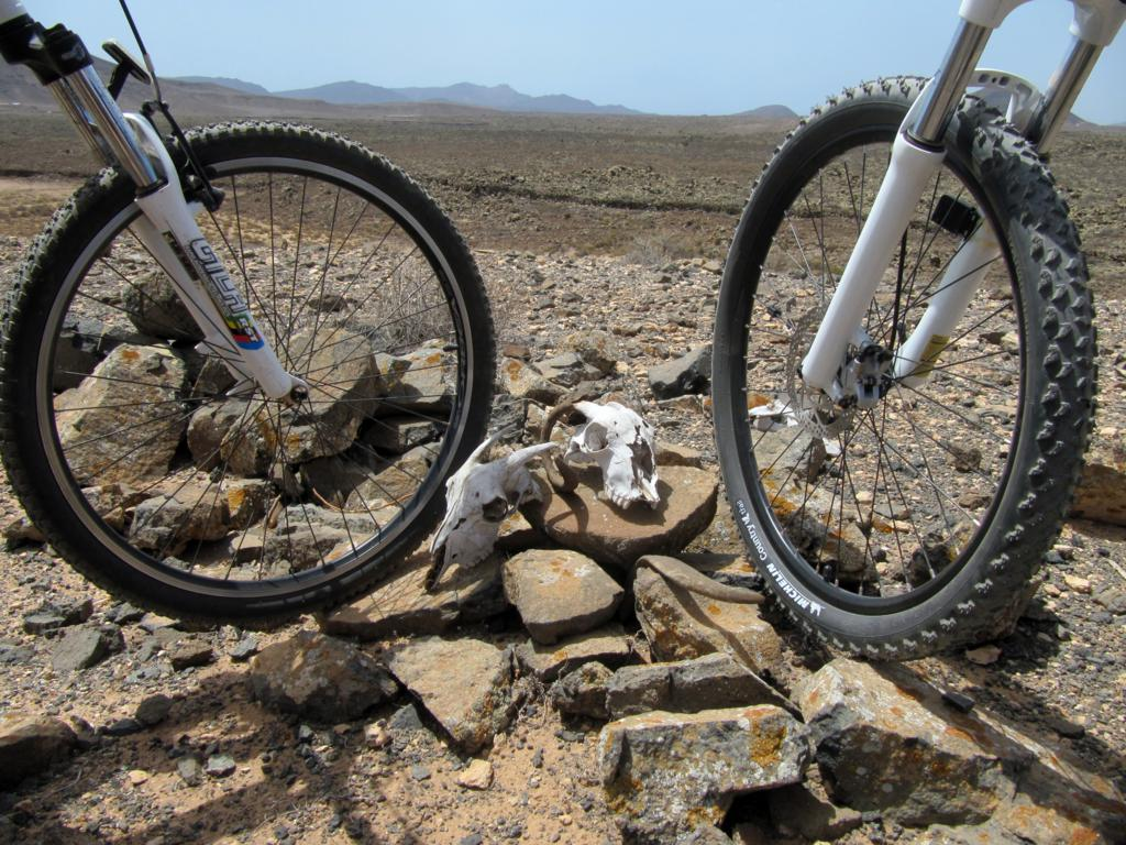 ROCAS VIEJAS - ruta en mountain bike
