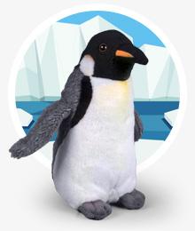 Ambientazione Pinguino