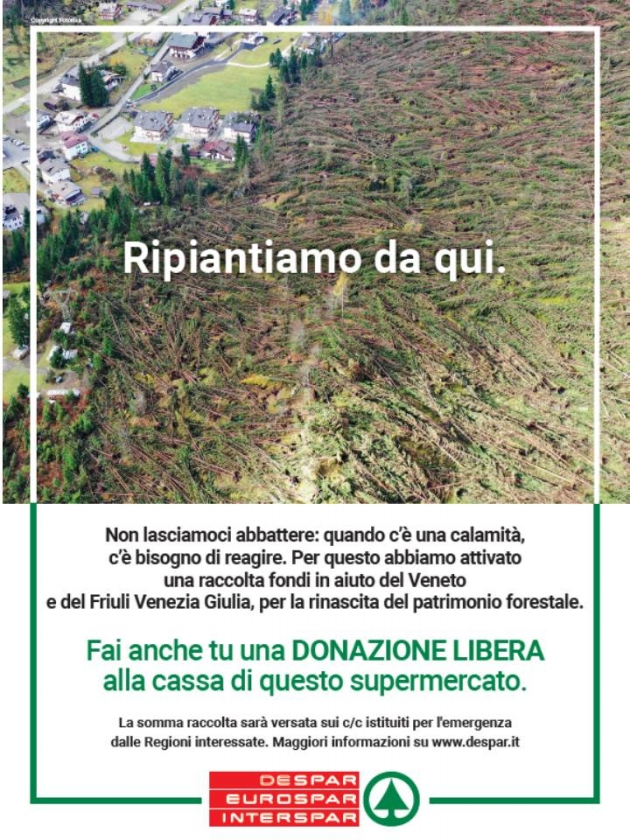 Un aiuto per le nostre montagne !