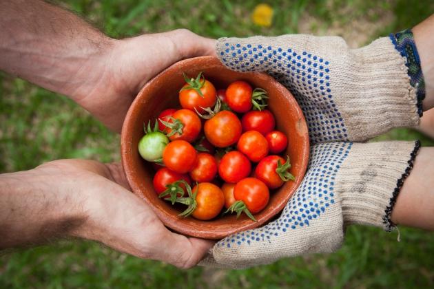 Lotta allo spreco alimentare: nel 2017 Despar Nordest ha donato cibo per 5,9 milioni di euro.