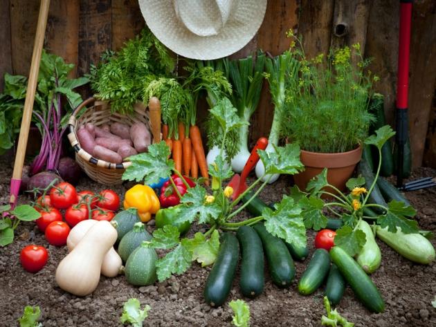 Il cammino sicuro dei prodotti agroalimentari.