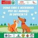 Aiutiamo gli animali in difficoltà