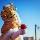Despar al Carnevale di Venezia !