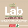 Il cibo al microscopio – Con il progetto Le Buone Abitudini Despar una straordinaria occasione per osservare il cibo con occhi nuovi