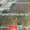 La solidarietà della gente e l'amore per il territorio – Con DESPAR raccolti 230.000 euro a favore delle popolazioni colpite dalla tempesta Vaia