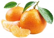 Clementine con Foglia