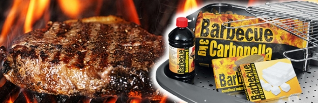 <p>Barbecue ist eine Exklusiv-Marke von Despar, die Ihnen im Sommer das &ldquo;n&ouml;tige Zubeh&ouml;r&rdquo; f&uuml;r einen perfekten Grillabend im Freien liefert. Und in der kalten Jahreszeit sind die Barbecue-Feueranz&uuml;nder ideal f&uuml;r Kamine, Holz- und Kachel&ouml;fen.&nbsp; Mit Barbecue entflammt die Leidenschaft f&uuml;r Ihren &ldquo;lodernden Freund&rdquo;!</p>