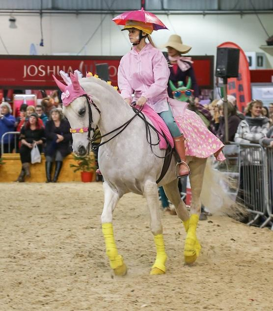 Westcountry Equine Fair 2