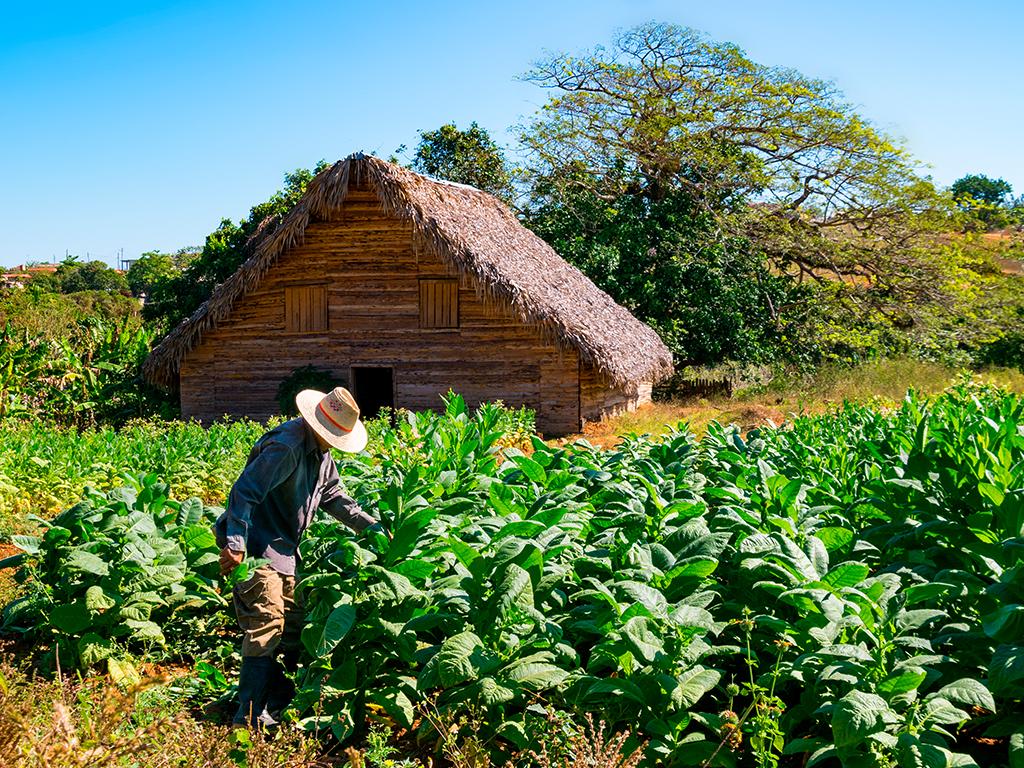 Cuba Viales 1.jpg