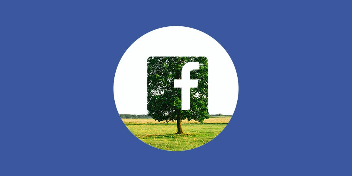 Facebook: migliora le performance della tua pagina aziendale
