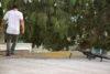 Grant germain BMX roof sweep CE