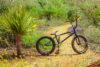 Rubio Bike Img 8650