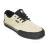 Etnies Jordan Shoe 1
