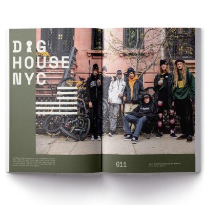 Image Dig 99 99 Dig House