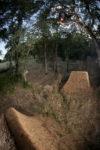 Pow  Bmx  Trails Redding Pow Trls Riding 29  Cr