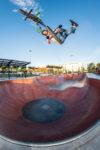 Alex Whip Endeavour Lr