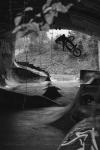 Corey Walsh By Shawn Duffield Mg 2315 Bw