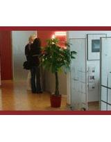 - Foto 1 von Dr. Ralph Stein auf DocInsider.de