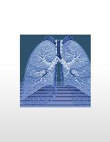 Profilbild von Lungenzentrum Geesthacht