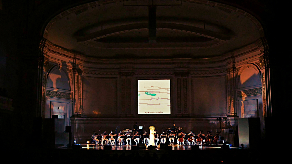 When In Doubt Give Bjork At Carnegie Hall In Depth
