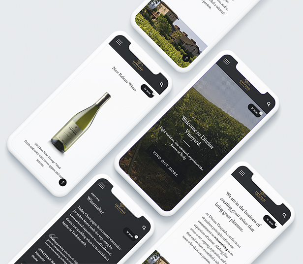 Diwine - Winery & Wine Shop, Vineyard WordPress Theme - 10
