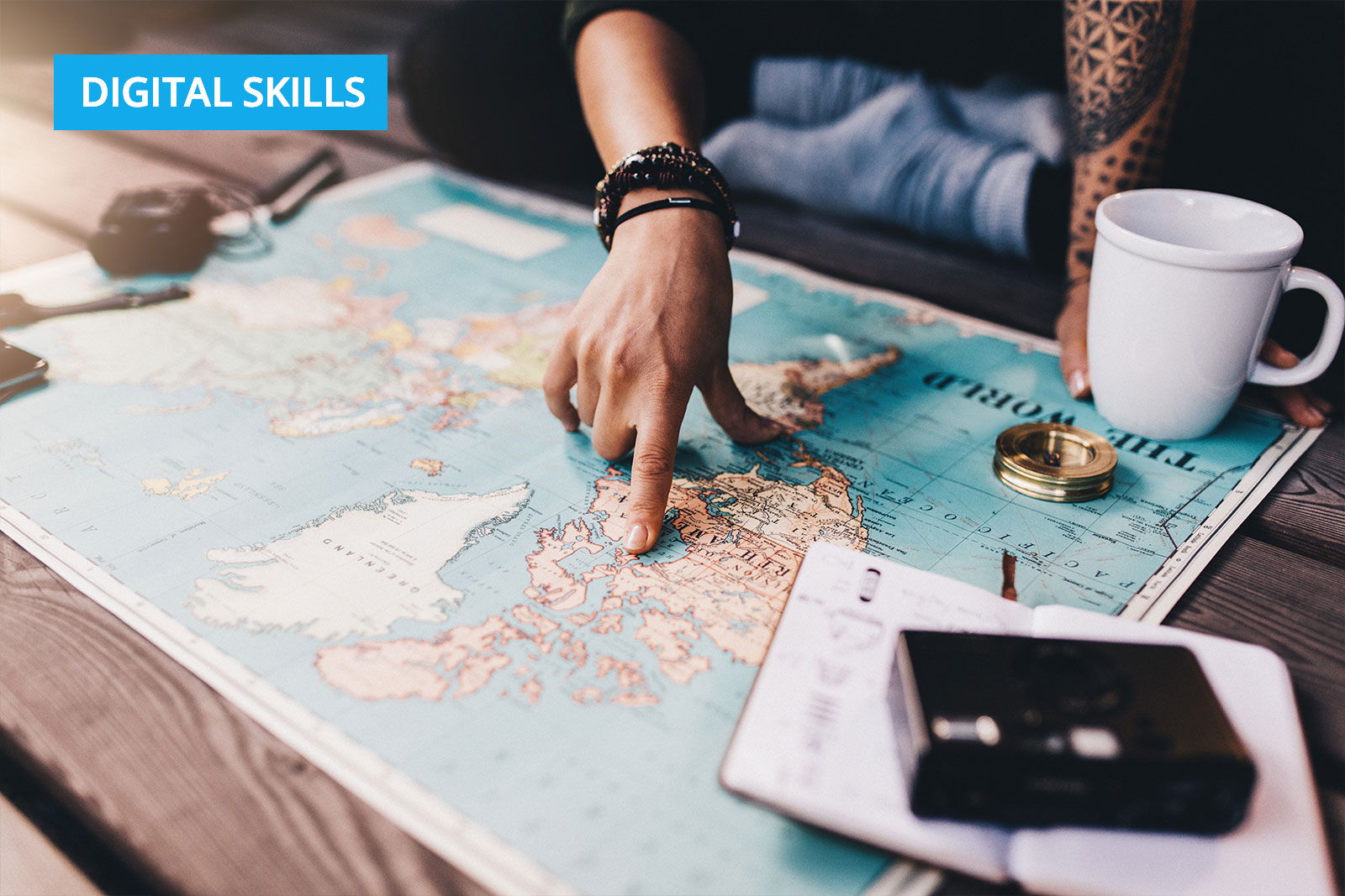 How Do Countries Rate on Digital Skills?