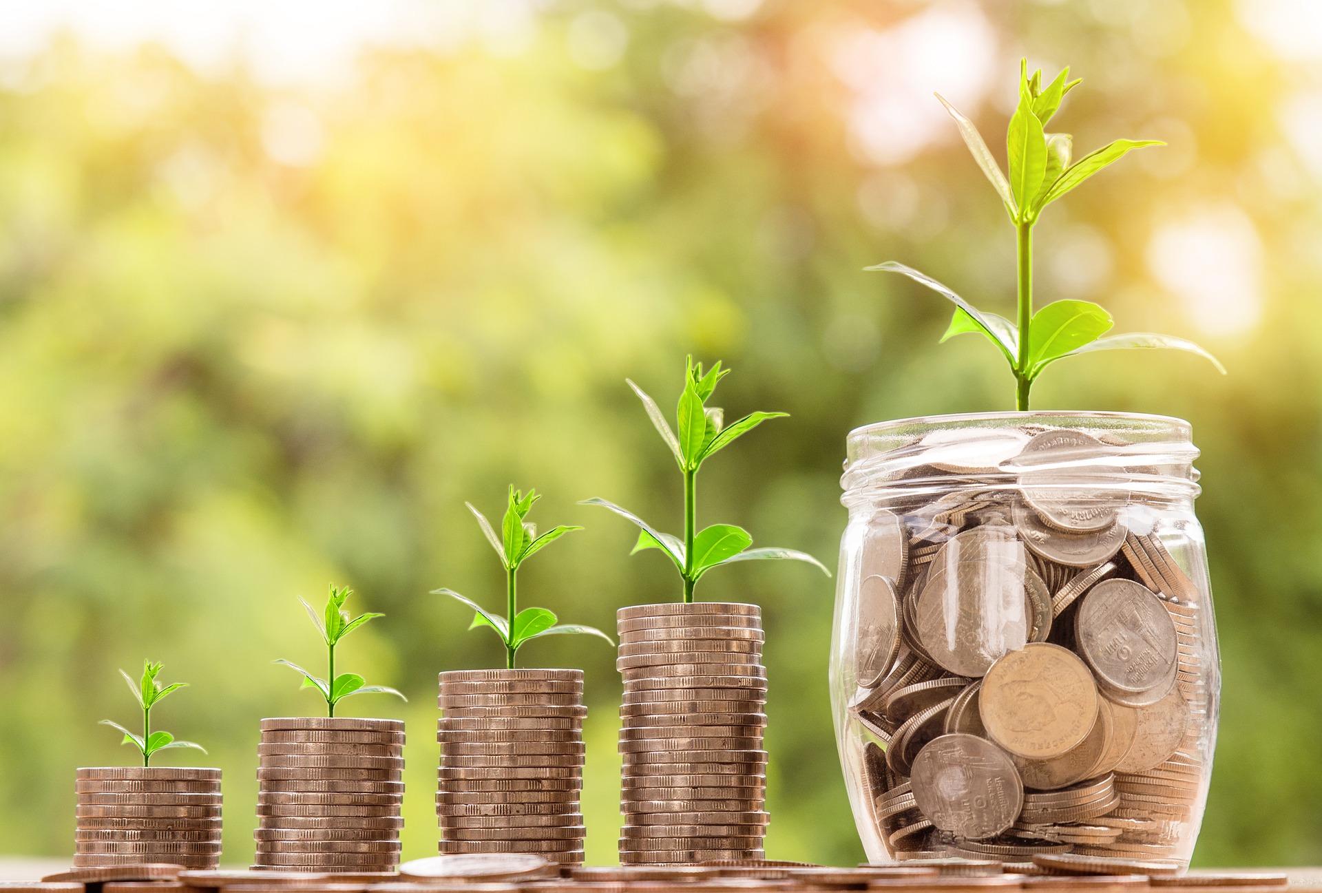 Finanční podpora pro platy rozhodčích
