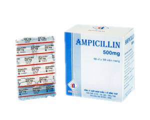 Ampicilline