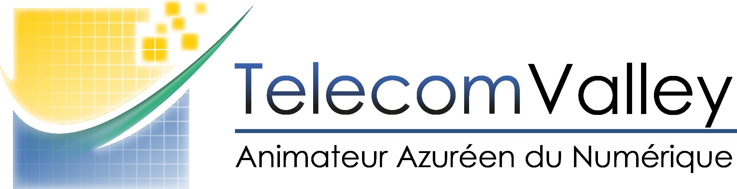 Telecom Valley_FR 2015 RVB.png