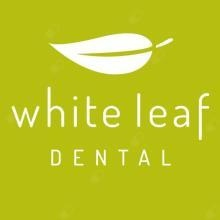 Scott Williams - dentist Haberfield
