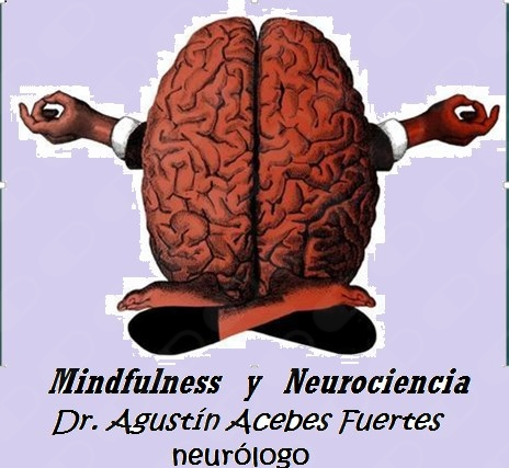 Agustin Acebes Fuertes - Galería de imágenes