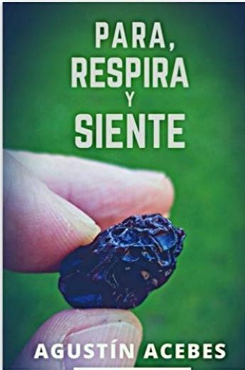 Agustin Acebes Fuertes - Multimedia