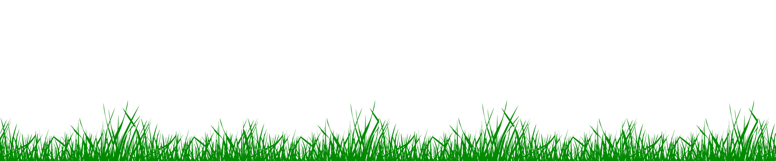 Dog-Jog-slider_Grass-background