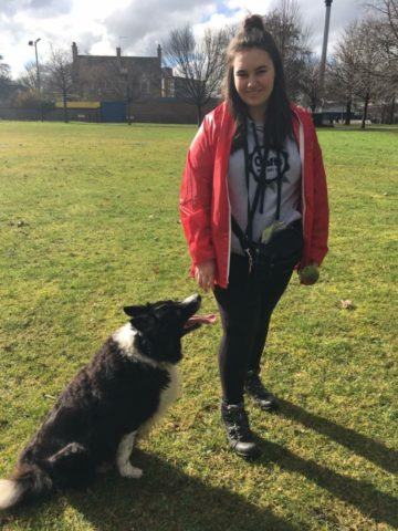 Molly & Angel Dog Jog Glasgow