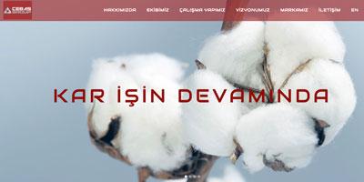 Cebaş Group  websitesi