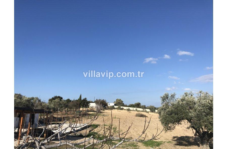 Ayasarandada 21 Dönüm Arazi İçinde Çiftlik Evi görseli