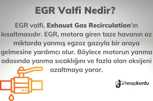 EGR Valfi İnfografik