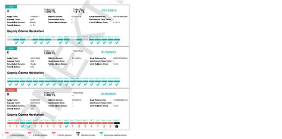 Örnek Kredi Notu Raporu ve Detaylı Açıklama