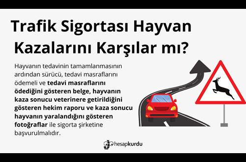 Trafik Sigortası Hayvan Kazalarını Karşılar mı?