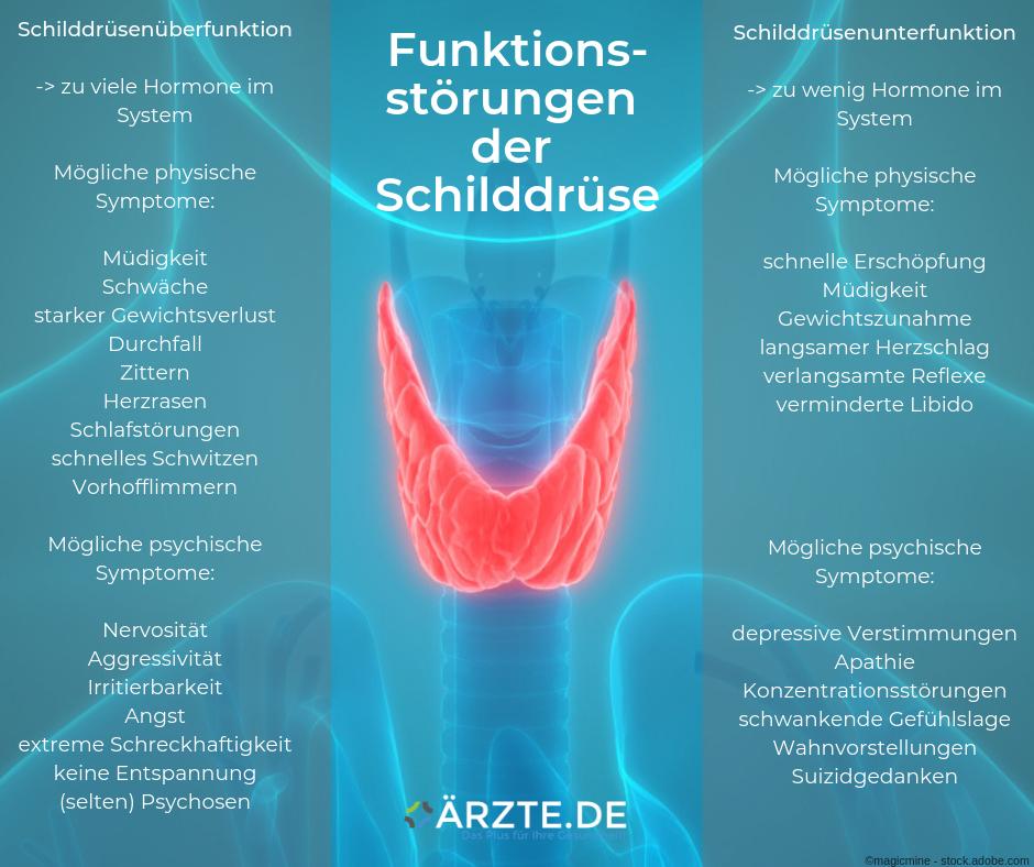 Funktionsstörungen Schilddrüse ÄRZTE.DE
