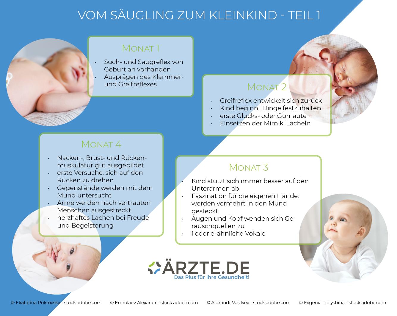 Vom Säugling zum Kleinkind - die ersten vier Monate Grafik