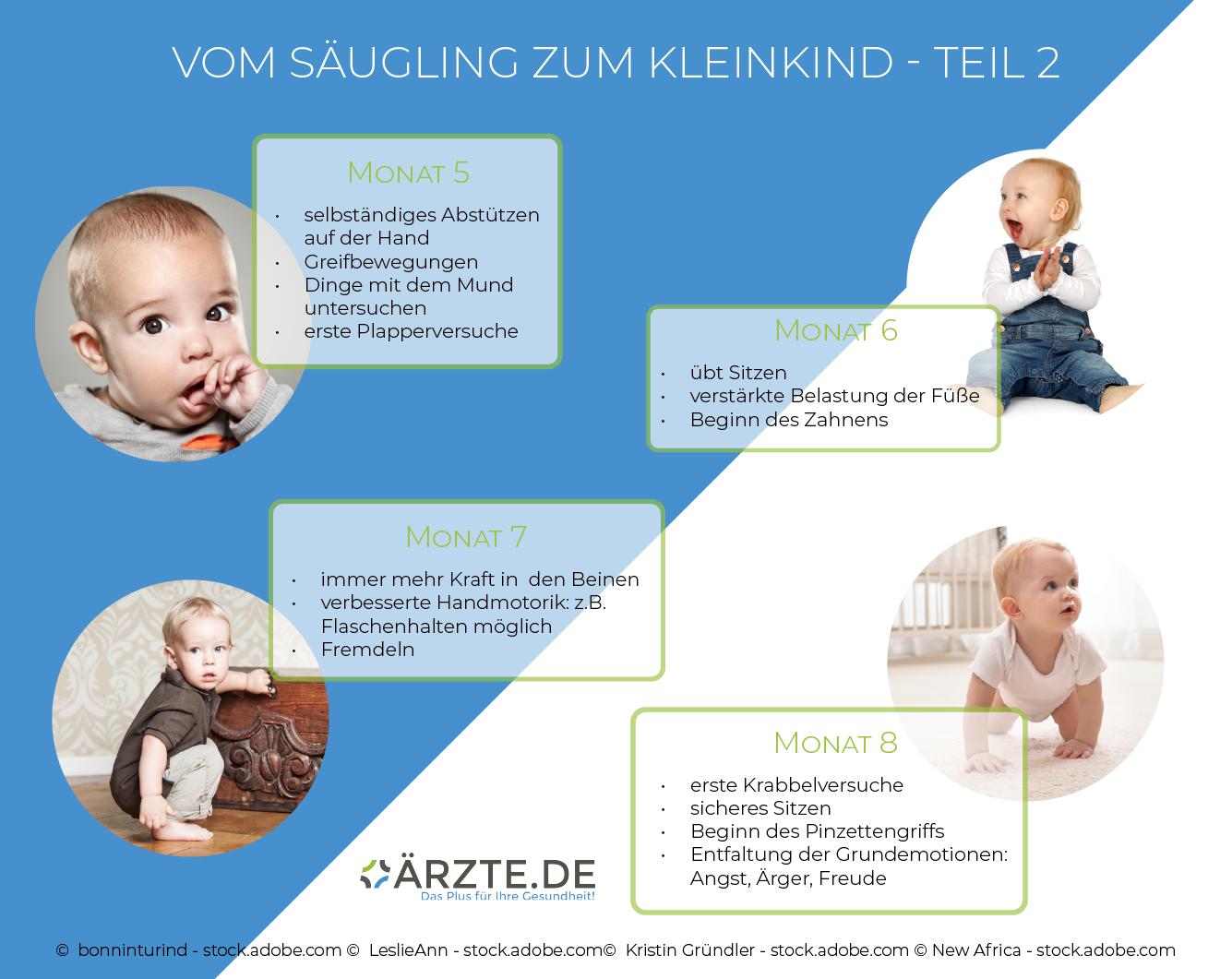 Entwicklung von Säuglingen in den Monaten fünf bis acht