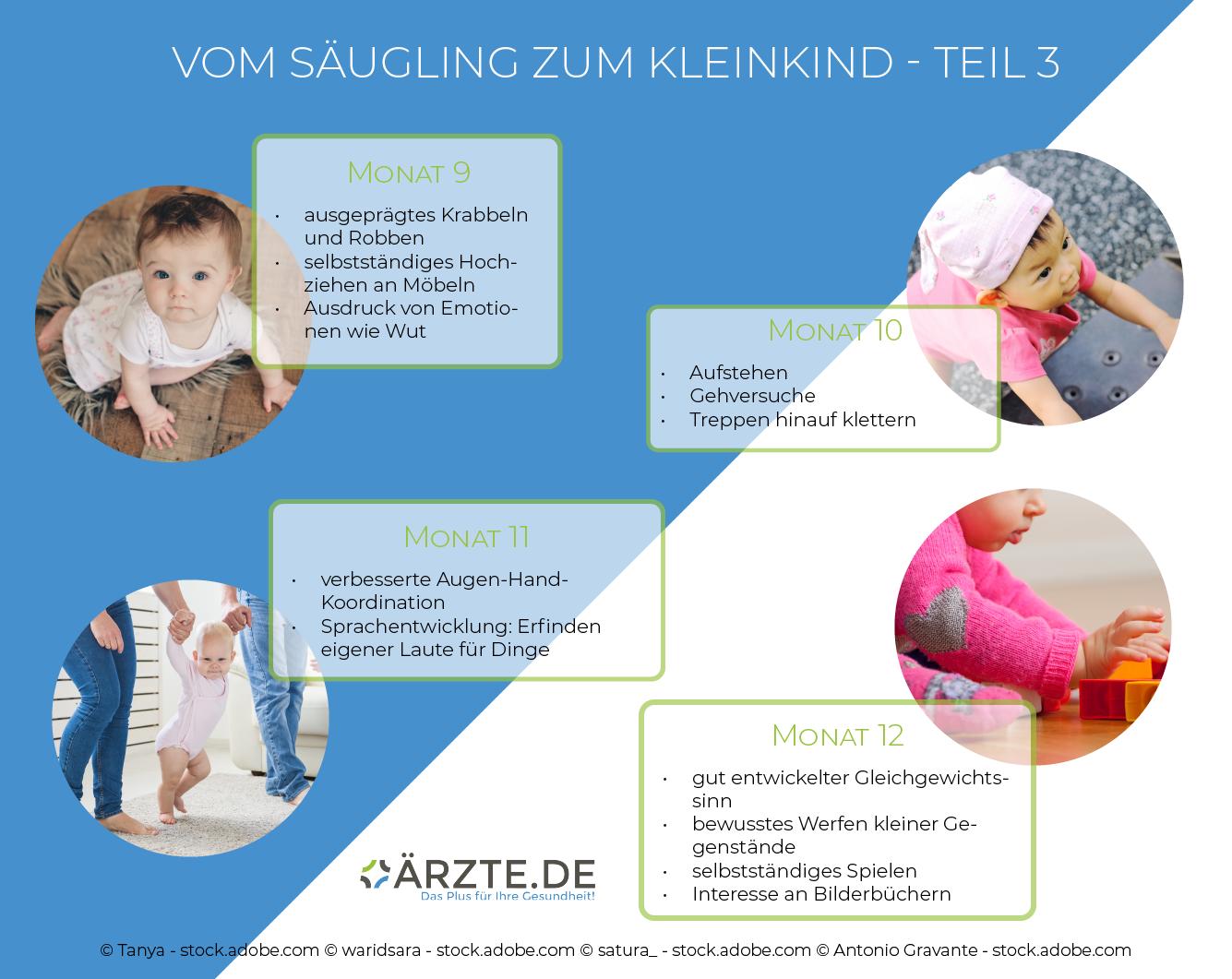 Entwicklung von Säuglingen in den Monaten neun bis zwölf