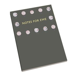 A5 Notebook Notes for Ewe