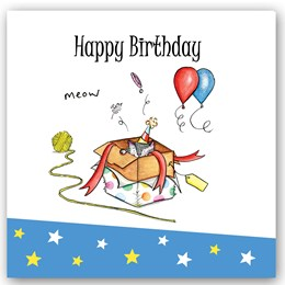 Birthday Cat (box) Occasions Card